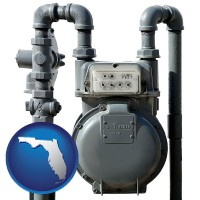 florida map icon and a residential natural gas meter