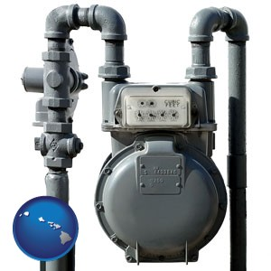 a residential natural gas meter - with Hawaii icon