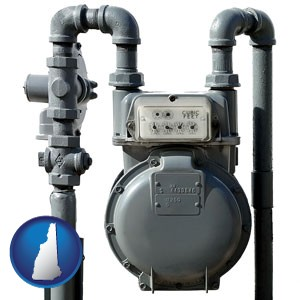 a residential natural gas meter - with New Hampshire icon
